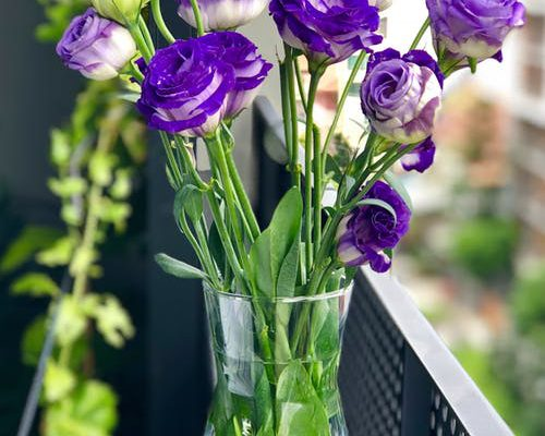 bloemen cadeau geven